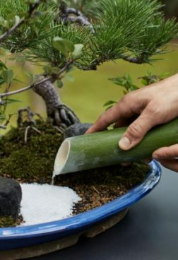 Aman Kyoto 1 - Miniatur japanischer Garten