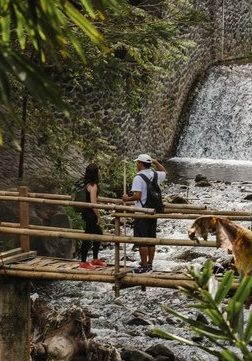 Amankila Bali - Trekking