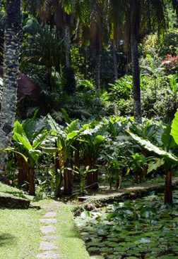 Anantara Maia Resort - Botanischer Garten