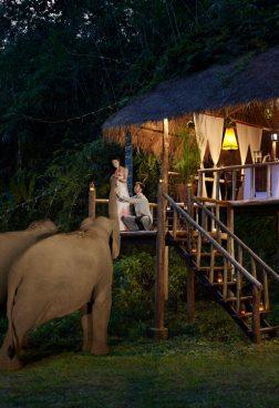 Anantara Golden Triangle Elephant Camp – Dinner mit Elefanten