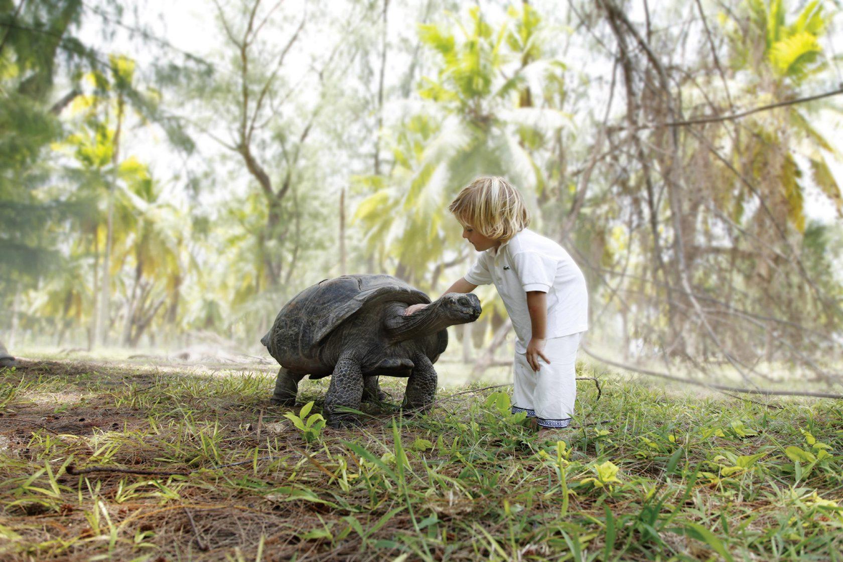 Four Seasons Resort Seychelles at Desroches Island – Schildkröten