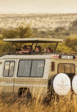 Four Seasons Safari Lodge Serengeti 5 - Ganztägige Ngorongoro Krater Safari