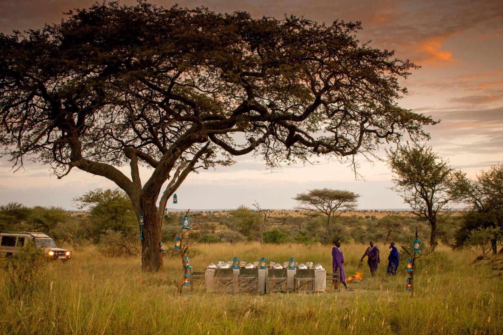 Four Seasons Safari Lodge Serengeti Busch Dinner
