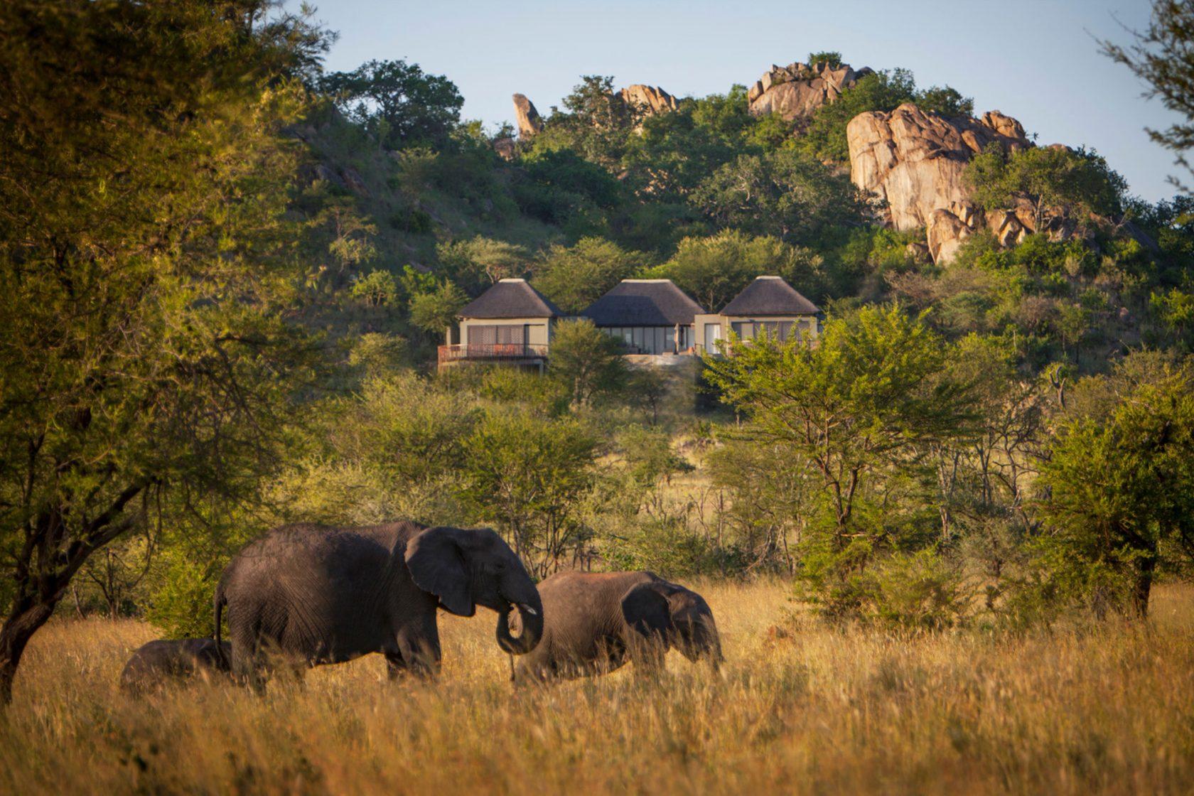 Four Seasons Safari Lodge Serengeti Natur