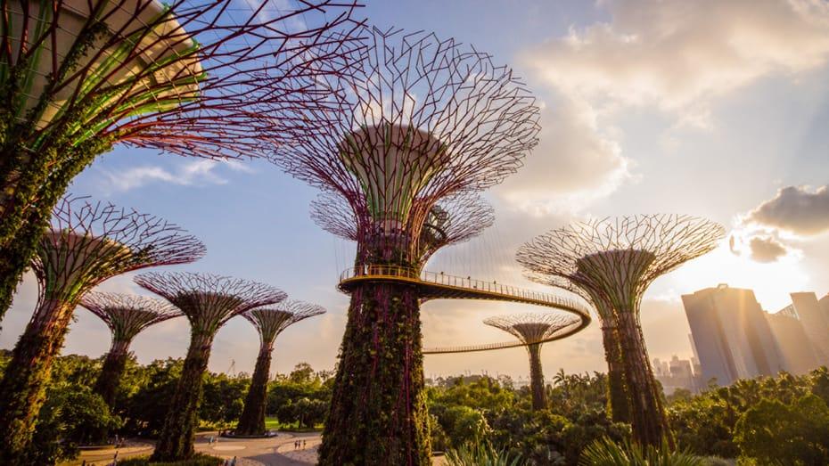 Four Seasons Singapur - Lokale Juwelen