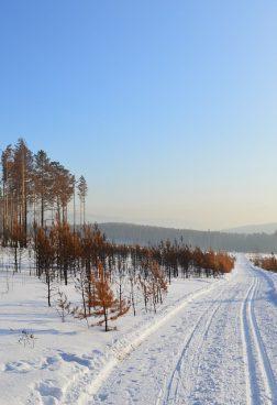 Hanseatic Nature R14 - Expedition Hokkaido und Sibirien