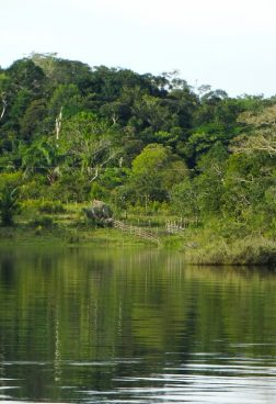 Hanseatic Spirit R10 - Expedition Amazonas