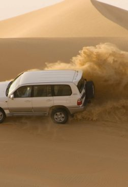 Jumeirah Al Naseem - Dune-Bashing