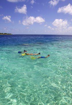 Dive-Erlebnis Malediven