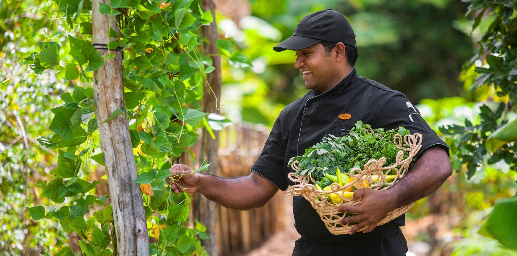 Ulagalla by Uga Escapes Organic Gardens