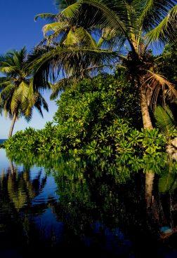 Banyan Tree Hotels & Resortsentdecken